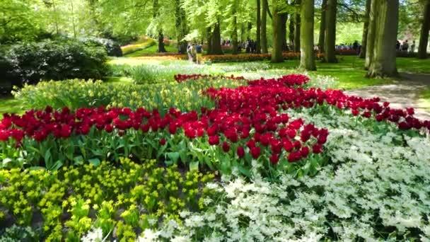 svěží trávník s květinami