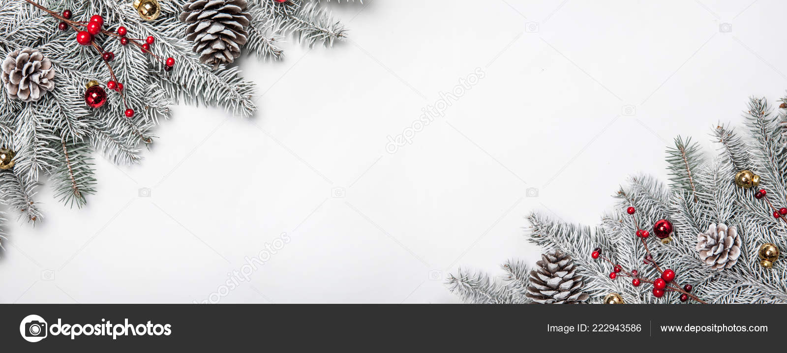 Christmas Card Background.Christmas Card White Background With Snow Fir Tree And