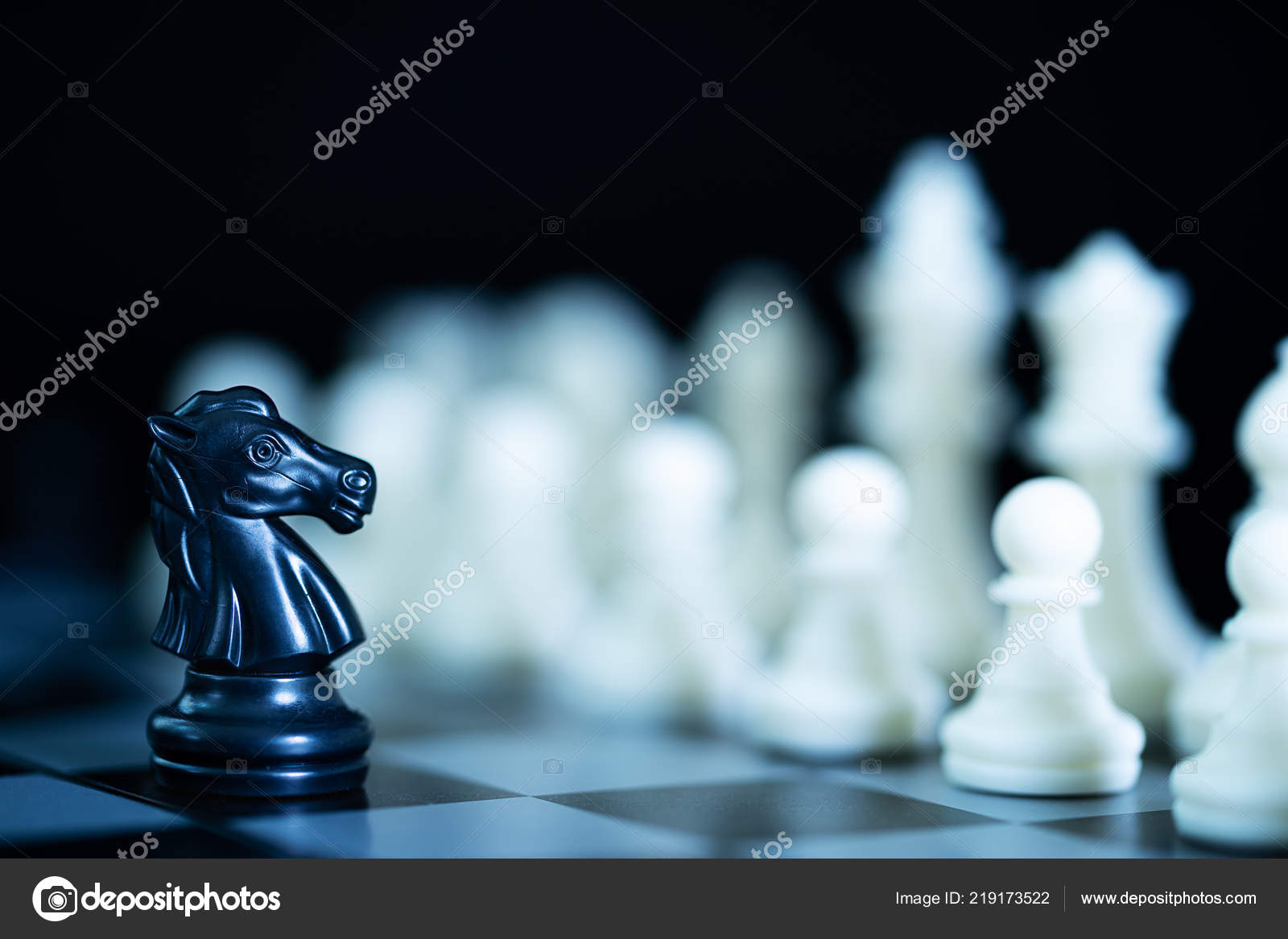 Set Chess Figures Playing Board Close Chess Pieces