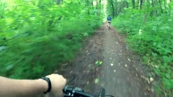 Cyklisté jezdí po lese