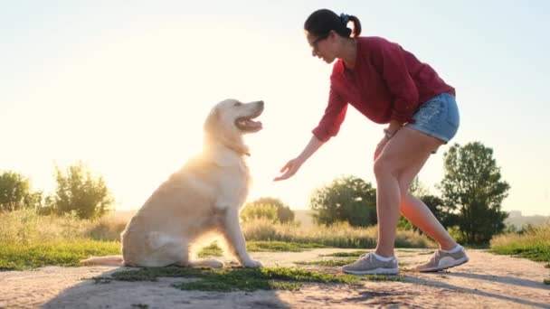 Woman training dog outdoors at sunset