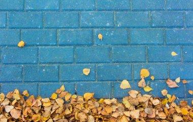 Autumn leaves on blue paving stone bricks background
