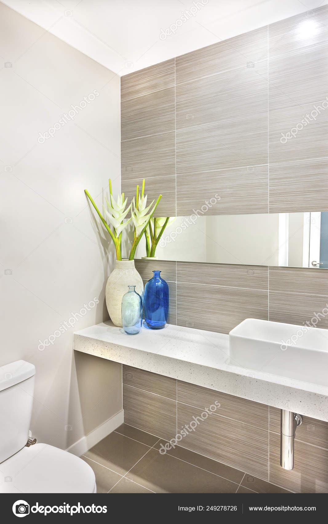 Decoración de un cuarto de baño con una planta verde — Foto ...