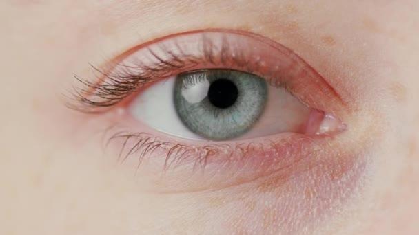 Detail krásné modré oko