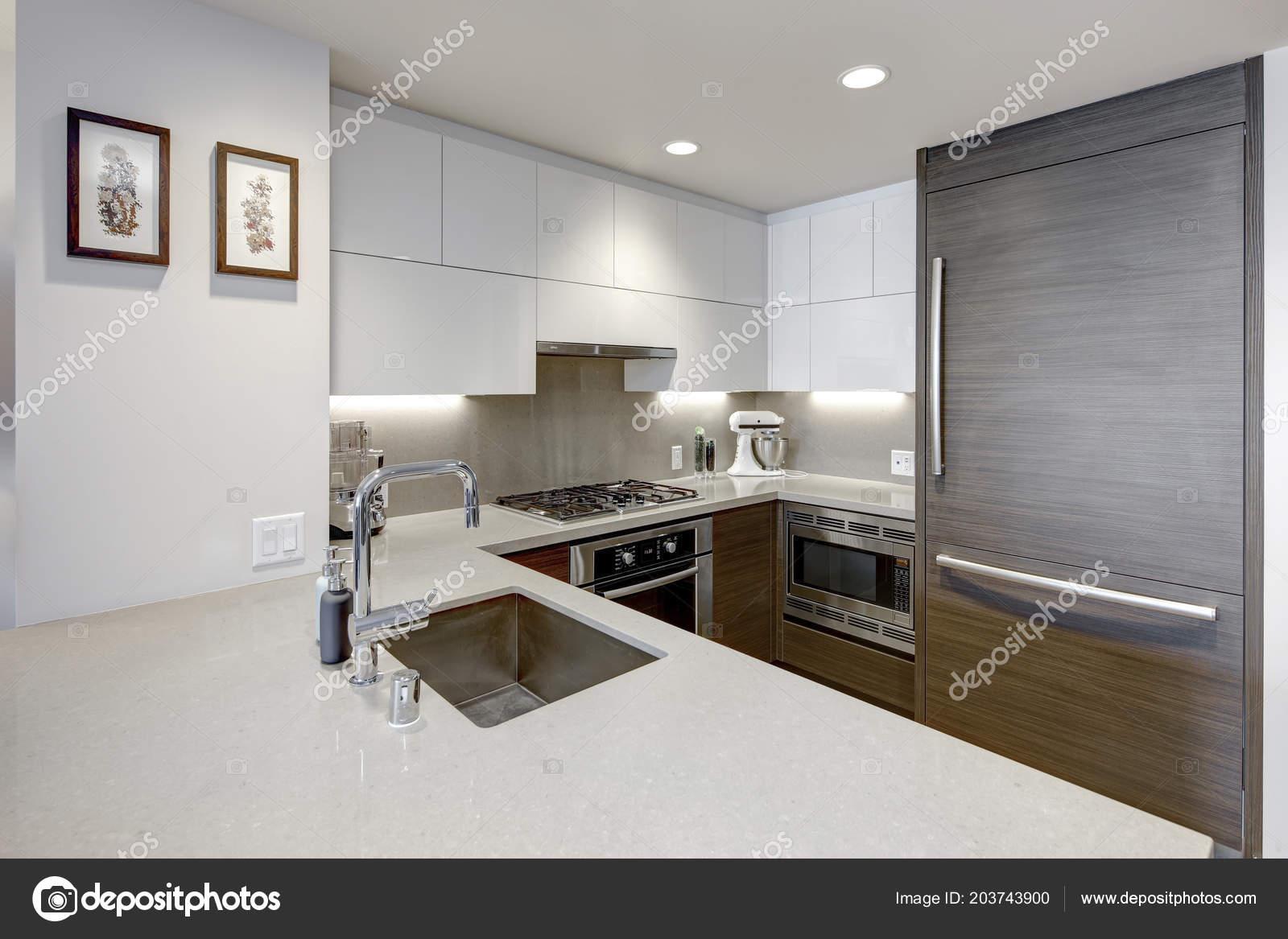 Interno Del Grattacielo Appartamento Dispone Cucina Stile Moderno ...
