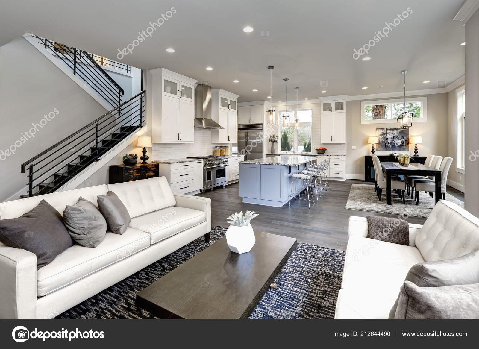 Große Moderne Luxus Wohnzimmer Interieur Bellevue Nach Hause U2014 Stockfoto