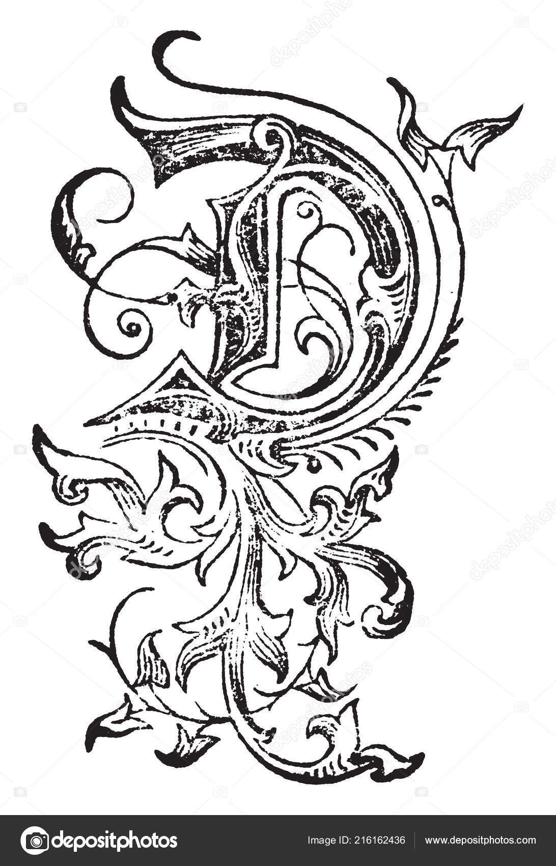 c68ac83a6 A decorative capital letter D surrounded by leaves and vines, vintage line  drawing or engraving illustration– stock illustration