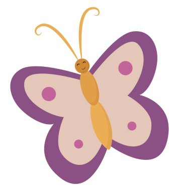 A colourful butterfly , vector or color illustration