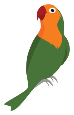 Green parrot, illustration, vector on white background.