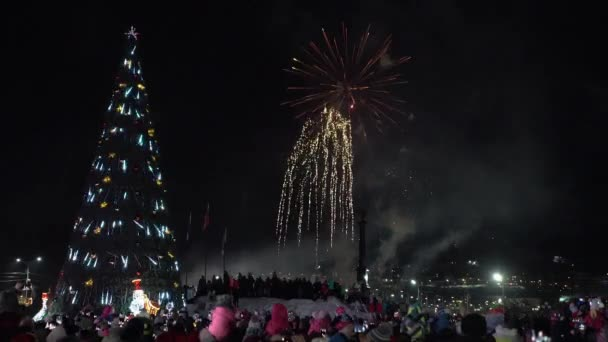 Festive fireworks in honor of Happy New Year 2019. Crowd of people watching and take pictures fireworks in night sky near celebration Christmas tree in Petropavlovsk-Kamchatsky City. Russian Far East