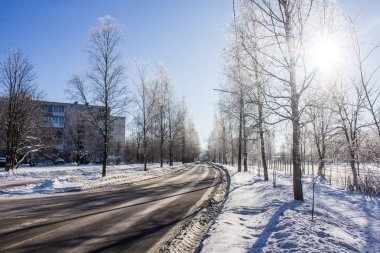 Snowy winter park. Winter sunny frosty day. A severe frost in the park. Leningrad Oblast, Russia