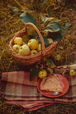 Basket with apples and charlotte from apples. Autumn harvesting. Collected homemade apples in the basket. Healthy food