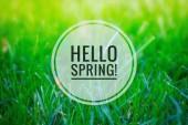 Fotografie Dobrý den, na jaře nápisu. Pohlednice. Pozdrav jara. Těšíme se na jaro. Ahoj jaro