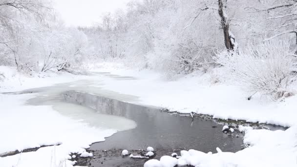 Téli táj havas fákkal és folyóval nappal
