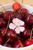 édes cseresznye bogyók fehér lemez, fa háttér