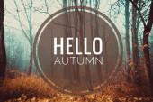 Banner hallo Herbst. neuen Monat. Grußkarte. Goldener Herbst. Herbst im Park. den Text auf dem Foto. Bäume im Herbstpark.