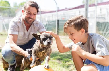Dad and his son taking care of abandoned dog in animal shelter
