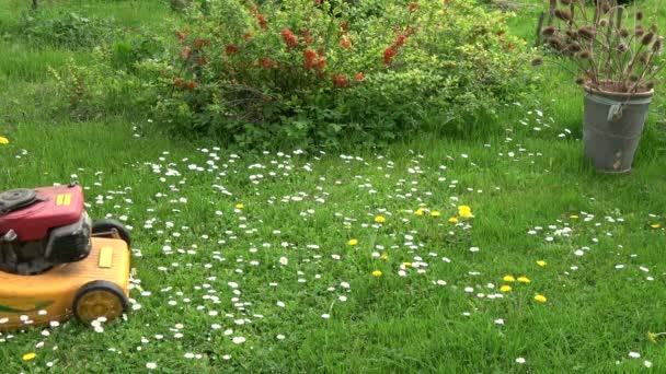 Gärtner im Bauhof mähte Frühlingsgras mit Rasenmäher