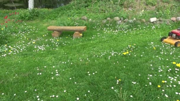 zahradník střih jarní tráva, travní sekačka