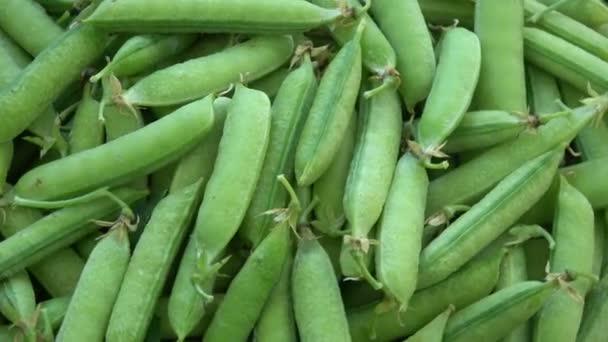 grüne Erbsenschale rotierende Lebensmittel Hintergrund