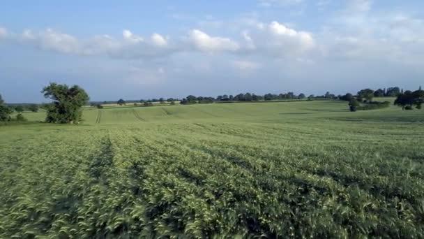 Campo dellorzo nel cavalcavia aerea Low Estate