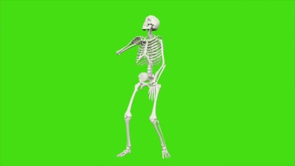 Skeletttanz. Nahtlose Schleifenanimation auf grünem Bildschirm.