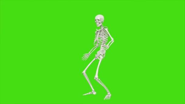 Skelett tanzen. Nahtlose Schleife Animation auf green-screen.