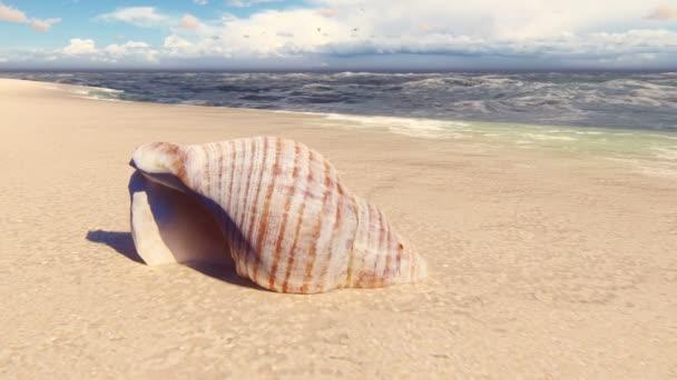 Nádherná skořápka na písečné pláži, umytá oceánskou vlnou. Krásná smyčka 3D animace.