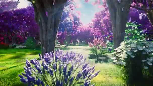 Erdei koronák a tündérfák, ragyogó napfény, repülő pitypang és pillangók. Mágikus erdő napfelkeltekor.