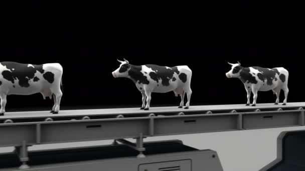 Krávy v Zákazová značka
