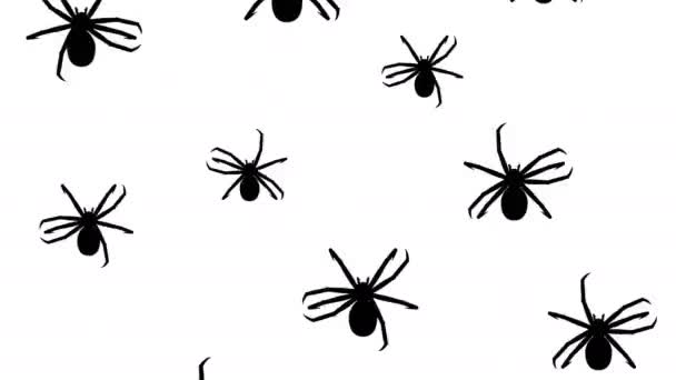 Invasion of hordes of spiders. Crowd of creepy arthropods runs on a white background, black silhouettes fill the screen and turn into a black backdrop, 3D animation.