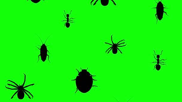 Invasion of arthropods