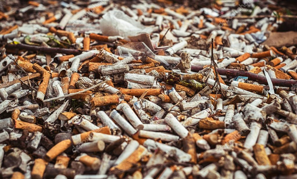 a lot of burnt cigarette butts, close up view