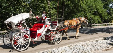 New York City, USA - 15 August 2018: The driver of a red and white horse drawn carraige is giving a tour of central park in new york city pointing out different locations in the park to tourists.