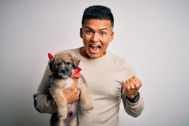Young handsome latin man holding cute puppy pet over isolated white background screaming proud and celebrating victory and success very excited, cheering emotion