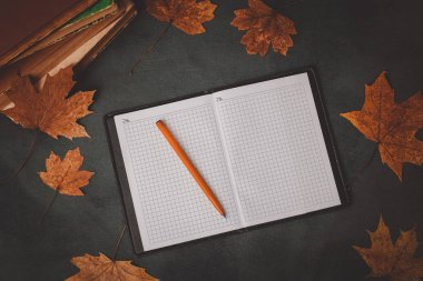 books, notebook, pencils for drawing with autumn leaves