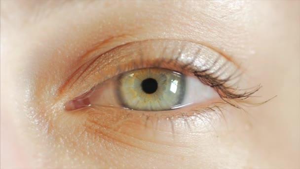 extreme Nahaufnahme der Iris des menschlichen Auges in 4k uhd Video. Die Iris des menschlichen Auges schrumpft. Extreme Nahaufnahme. 4k uhd 2160p Filmmaterial.