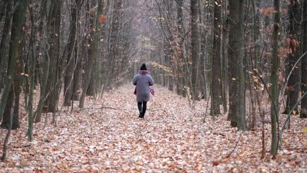 Mladá žena chodit sama po stezce v podzimním lese. Pohled zezadu. Cestování, svoboda, příroda koncept
