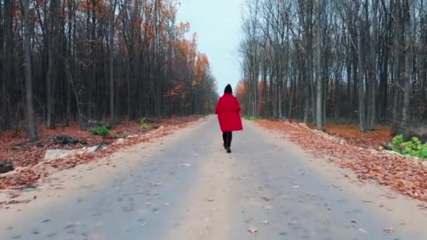 Young woman in red coat walking alone along empty road in autumn forest. Back view. Travel, freedom, nature concept. Girl goes ahead away from drone flying camera.