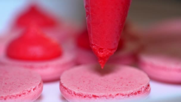Macaroons - delicious and beautiful french dessert. Making pink macarons, squeezing and adding cream filling from pastry bag. Cooking, food and baking, pastry shop concept