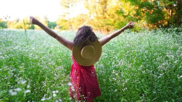 Žena v červených šatech a slaměném klobouku, stojící s otevřenou náručí v zeleném poli. Krása, příroda, cestování, naděje, harmonický koncept