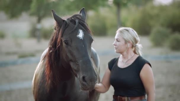 Portrét mladé ženy chválí koně po tréninku v ohradě na ranči. Pojetí hospodářských zvířat, školení, dostihy, přírody