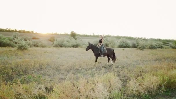 Pretty horsewoman riding dark horse on field in fall. Concept of farm animals, training, horse racing, nature. Slow motion