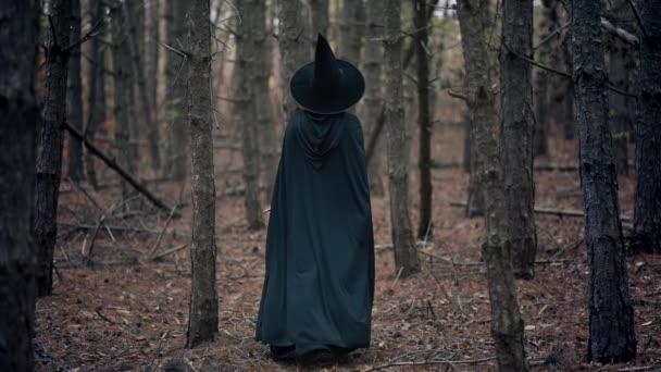 Nerozpoznatelná žena jako černá čarodějnice kráčí mezi stromy v podzimním lese.Dívka v dlouhých šatech, pláštěnce, víla klobouk. Halloween koncept, cosplay oblékání