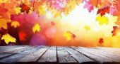 Fotografie Autumn Colorful Background With Leaves In Sunlight