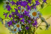 Kytice květin pozadí pole