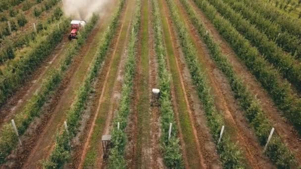 jabloň s traktorem