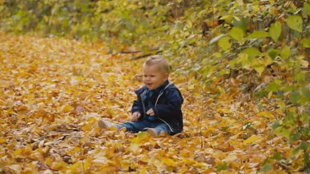 malý chlapec v podzimním lese