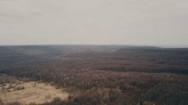 polní cesta v lese