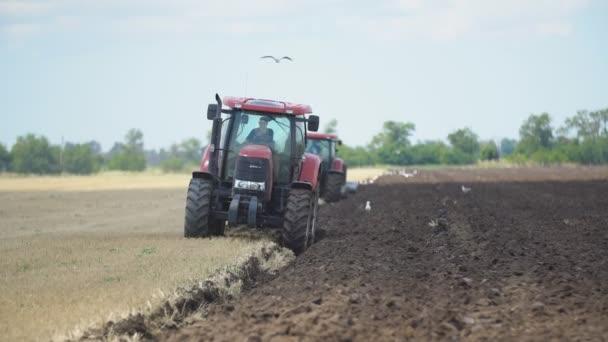 traktor szántja a területen